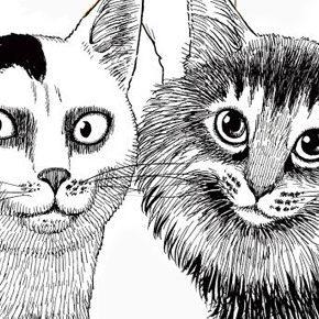 10 mangás para os amantes de gatos